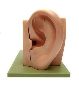 man met handen tegen oren
